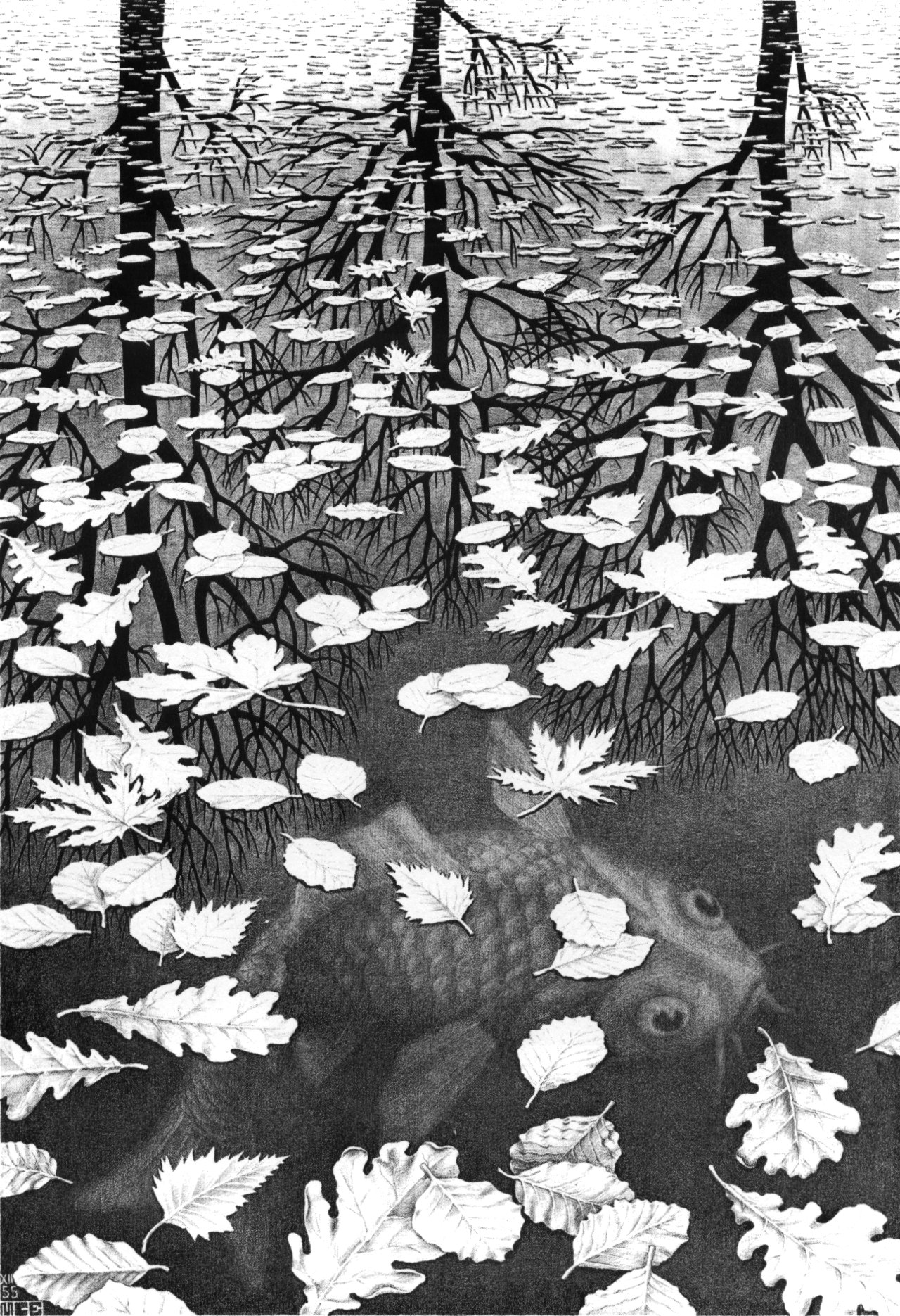 How to count the fish in a lake? \copyright MC Escher.