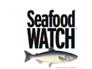 Sea Food Watch