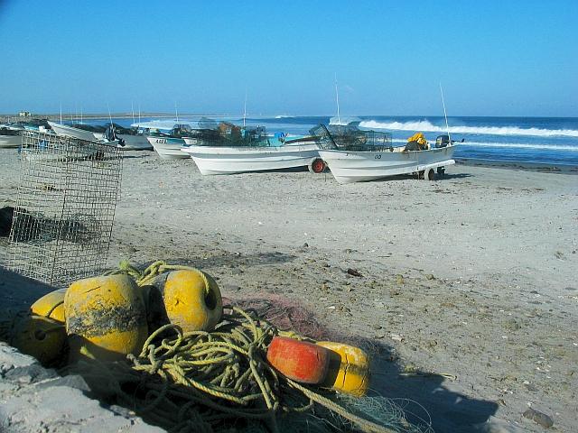 Social-ecological Coastal Systems
