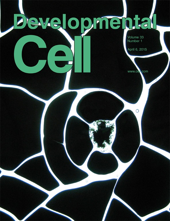 Featured article Developmental Cell 2015