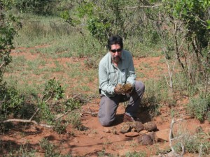 Rodolfo conducting a dung survey at a control site, Mpala Research Station, Kenya.