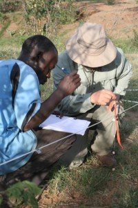 Rodolfo and field assistant sampling vegetation at control sites at Mpala Research Station, Kenya.