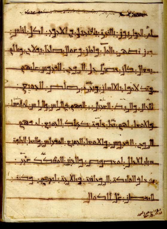 Salomon Azubi to Kircher, Fasciculus Epistolarum... Constantinople, undated.