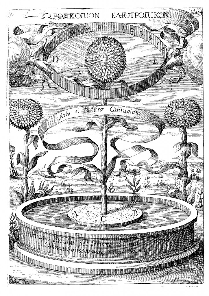 The sunflower clock, from Kircher, Magnes, sive De Arte Magnetica (1643 ed.), p. 644.