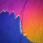 Picric Acid -  Cooper Citek, Department of Chemistry
