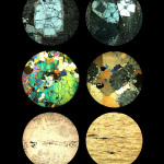 Thin Sections by Mary Cirino