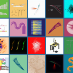 Stitching Together the Biomechanics of Touch - Sammy Katta