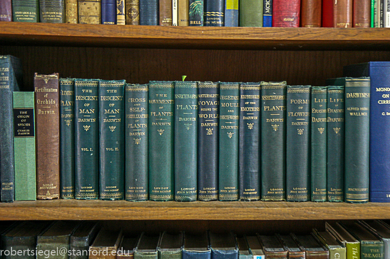 darwin safari - Richard Keynes' library
