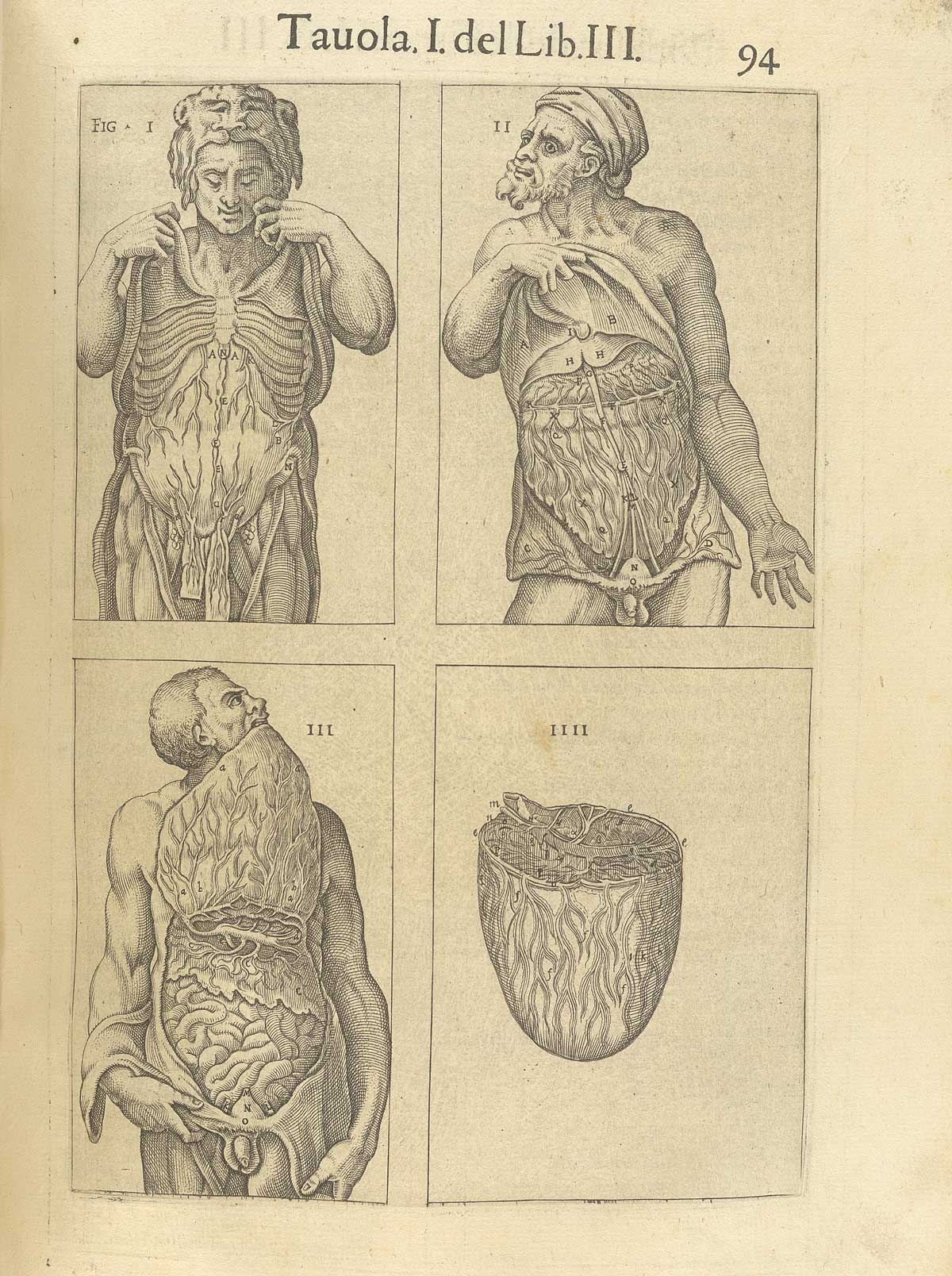 "Valverde de Amusco. ""Anatomia del corpo humano"". Anatomy of the Human Body. p094"
