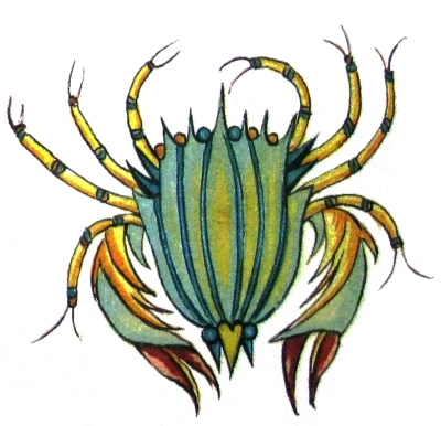 mythical crab drawing