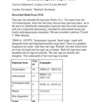 2014 Figurine Report -- Catalhoyuk.pdf