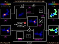 Quantum transplantation