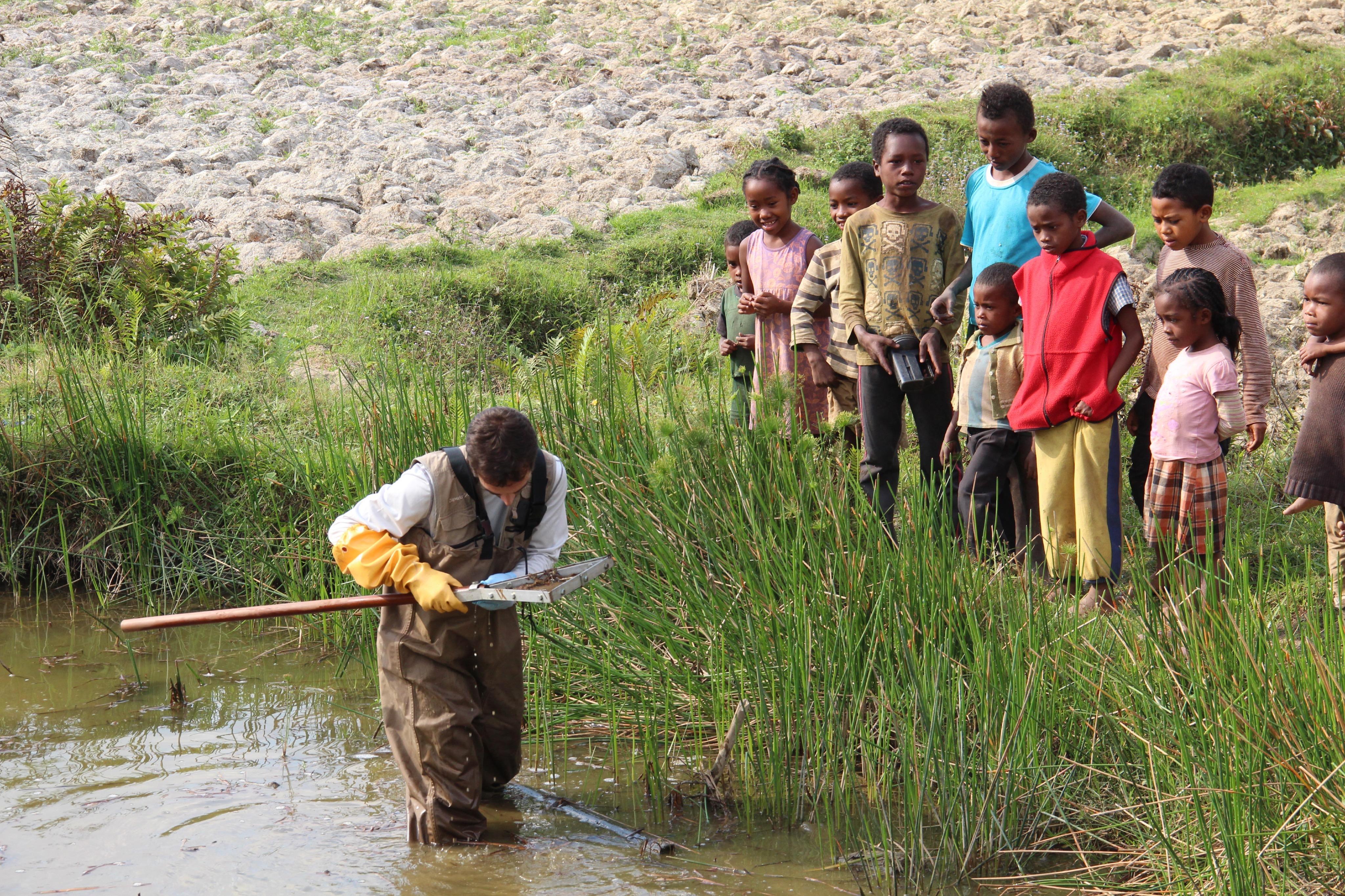 Madagascar, hunting for Schisto