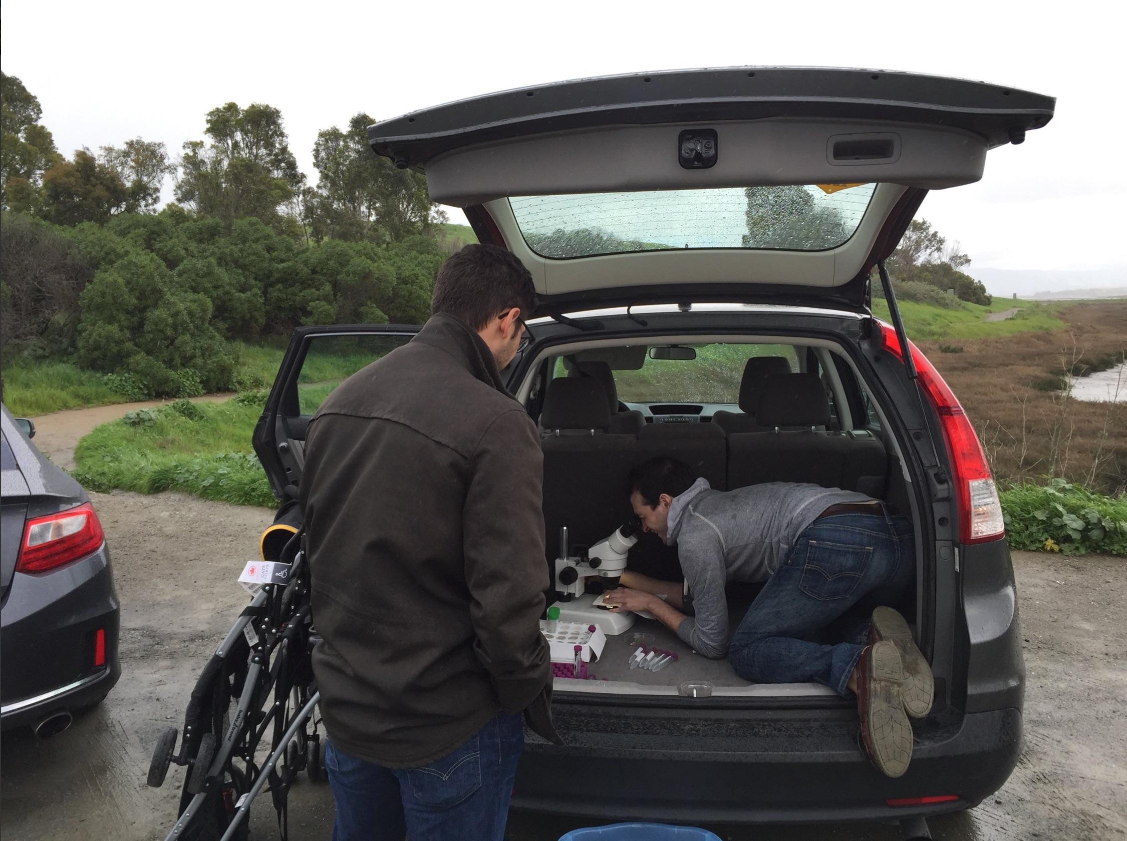 Microscope In A Trunk