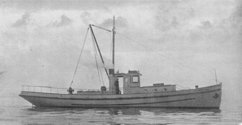 The Albacore