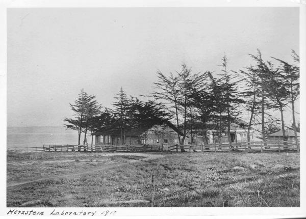 Herztein Laboratory 1910