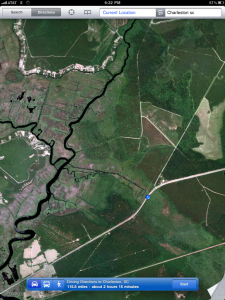 Satellite view of abandoned rice fields ACE basin, NW of Highway 17