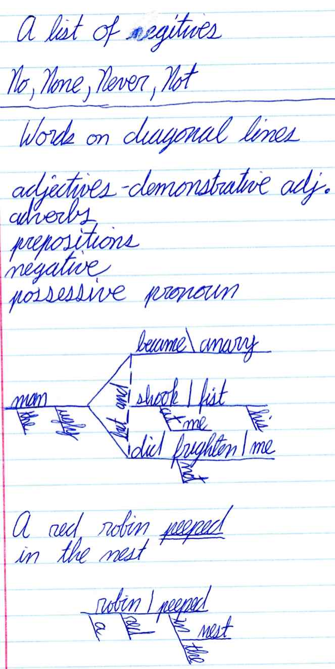 Stanford Linguistics Newsletter Rose Diagram1 Department News