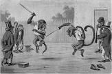 monkeyfight.jpg