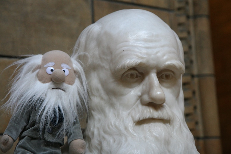darwin statue and doll