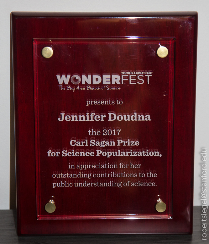 Wonderfest sagan award 2018
