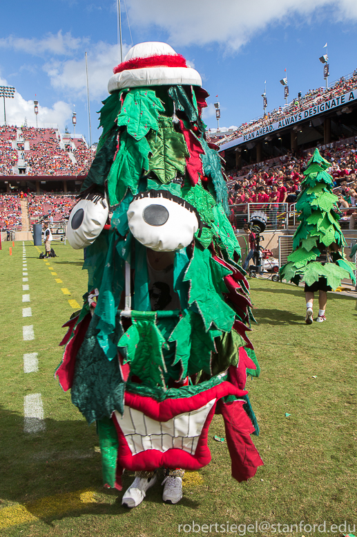 Related Keywords & Suggestions for stanford tree 2014 Stanford Tree 2013