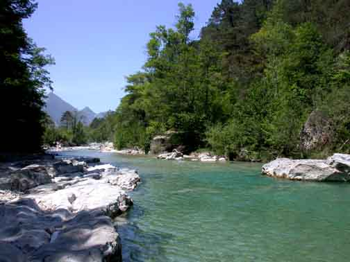 Trout in the alps maritime province of france for France pools